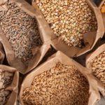 Essentials // Top 10 surse de proteină vegetală